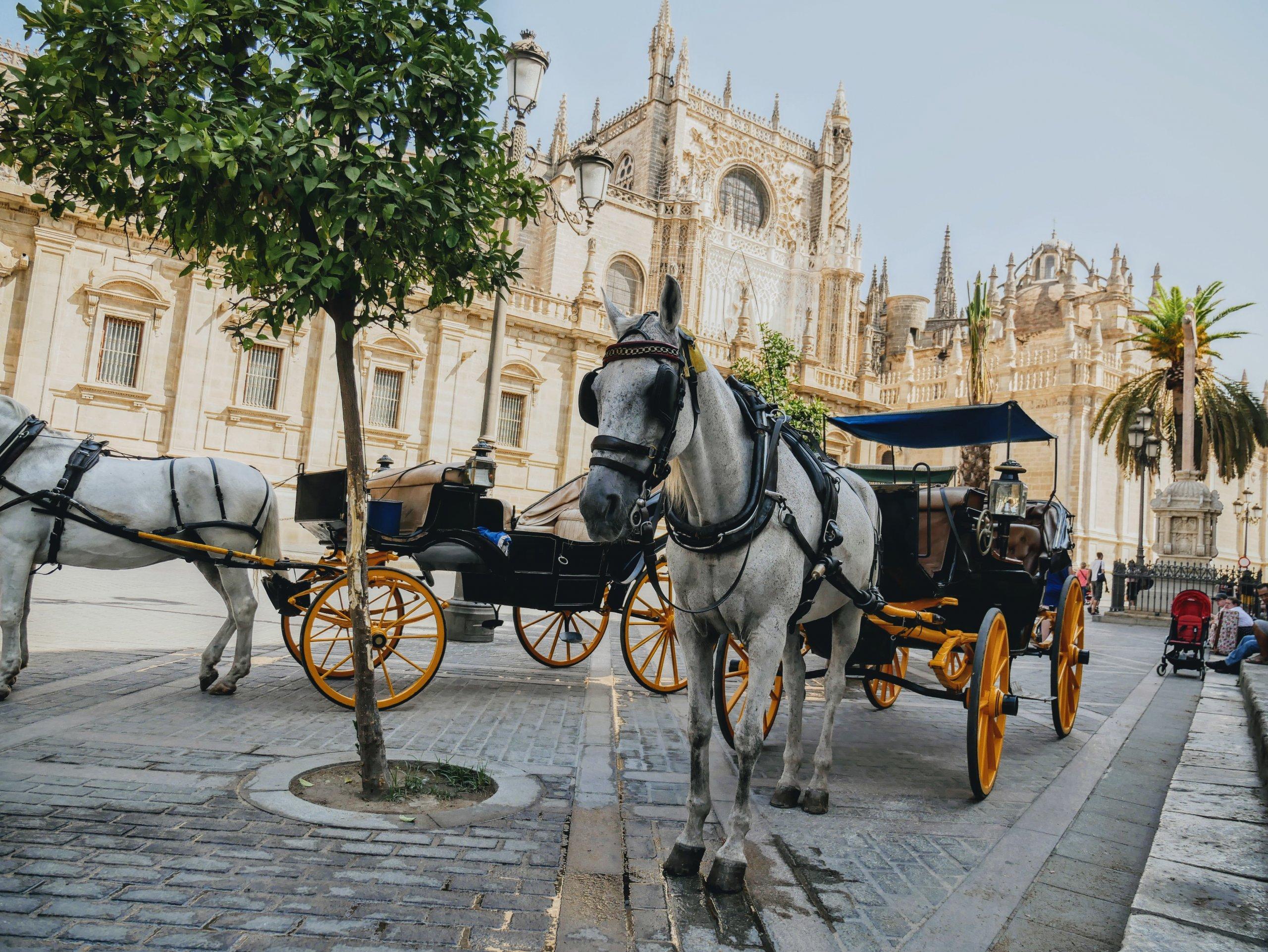 Andalucia, Spain   Travel Film